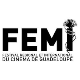 Logo_FEMI_2012.jpg